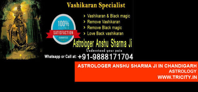 Astrologer Anshu Sharma Ji