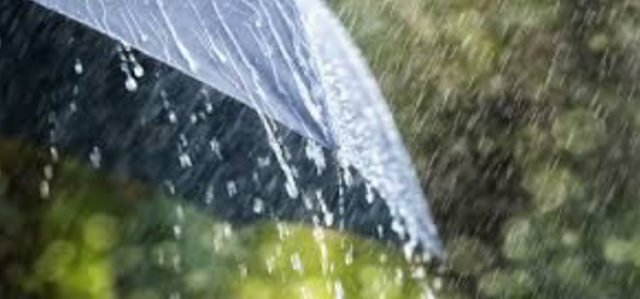 Rainfall In Chandigarh