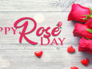 Happy Rose Day Wallpapers
