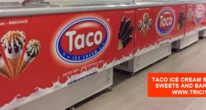Taco Ice Cream Shop